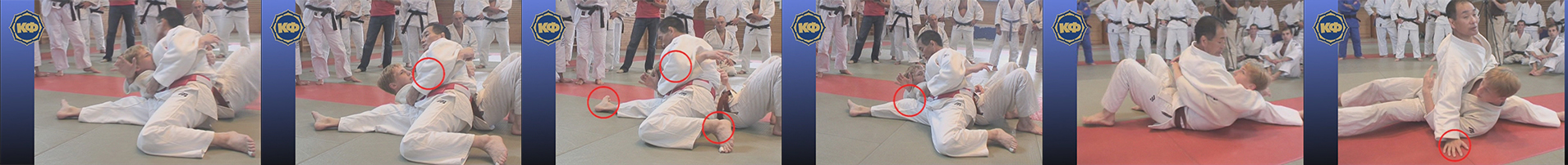 Hon-kesa-gatame (painfull hold from the side). Judo Poster 3. Yellow Belt 5 Kyu.
