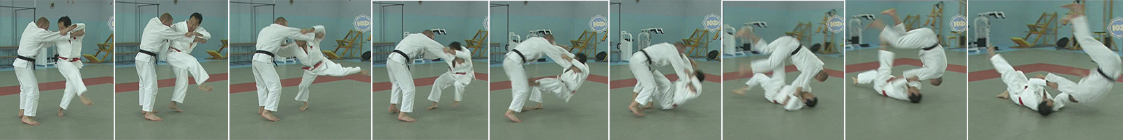 Обманное движение подхватом изнутри (uchi-mata). Бросок через голову (tomoe-nage).